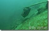 Unterwasserstilleben