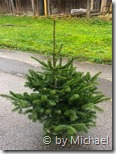Christbaum